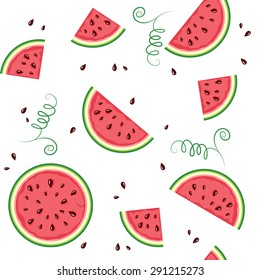 seamless pattern from watermelon. Vector illustration