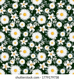Seamless pattern with white daisies and bee on green background. Vector illustration