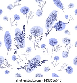 Seamless Pattern with Wild Flowers Sketches. Botanical Hand Drawn Digital  Illustration