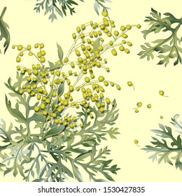 Seamless pattern of wormwood. Artemisia absinthium. Wormwood branch, wormwood flowers and leaves . Cosmetics and medical plant. Vector illustration.