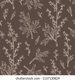 Seamless pattern with wormwood: wormwood branch, wormwood flowers and leaves . Cosmetics and medical plant. Vector hand drawn illustration.