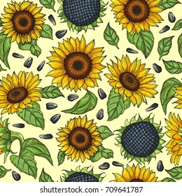 Seamless pattern with yellow sunflowers. Vector illustration sunflower background blossom bright