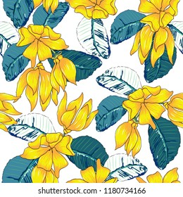 Seamless pattern Ylang-ylang flowers on white isolated background.Vector illustration hand drawing.For used wallpaper design,textile fabric or wrapping paper.