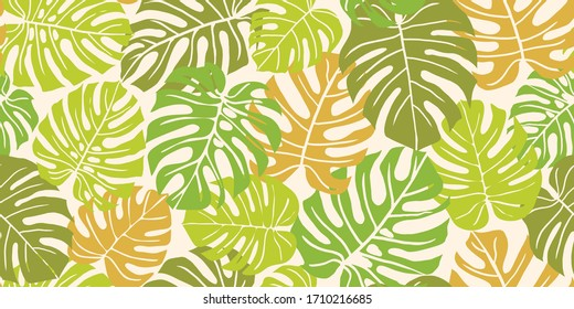 A seamless repeat pattern featuring tropical monstera deliciosa leaves in a wallpaper background design. Great for packaging, stationery and projects for summer, tropical, jungle decorative designs.