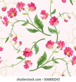 Seamless sweetpea flowers