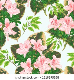 Seamless texture bouquet with tropical flowers floral arrangement, with beautiful light pink  rhododendron Ficus benjamina and ficus natural background vintage vector illustration  editable hand draw