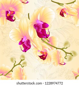 Seamless texture branches orchids yellow flowers  tropical plant Phalaenopsis  on a nature background   vintage vector botanical illustration for design hand draw