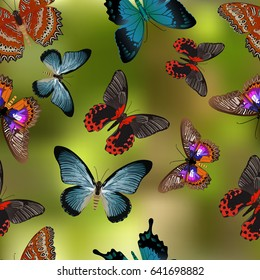 Seamless texture Butterflies. Realism style execution.