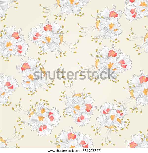 Seamless texture Chestnut  flower  vintage vector illustration