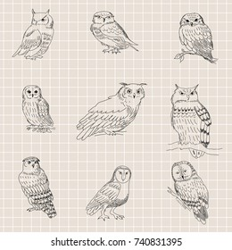Seamless texture with a painted owls on a background of a sheet of paper