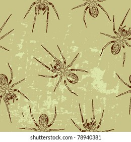 seamless texture with a spider