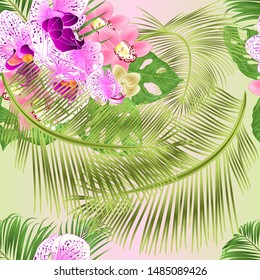 Seamless texture Tropical Orchids Cymbidium  pink and  Phalaenopsis flowers and Monstera and palm  watercolor vintage vector illustration editable hand draw