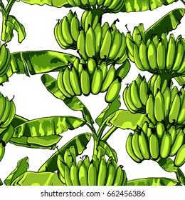 Seamless tropical pattern with banana leaves. Vector illustration.
