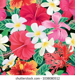 Seamless tropical pattern with hibiscus flowers and plumelia background. Vector set of exotic tropical garden for holiday invitation, greeting card and textile fashion design.