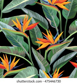 Seamless tropical pattern with strelitzia. Vector illustration.