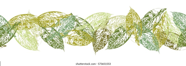 Seamless vector pattern of avocado leaves on white border