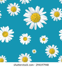 Seamless vector pattern with daisies