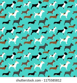 Seamless vector pattern with dogs - bulldog, dachshund, terrier on turquoise background