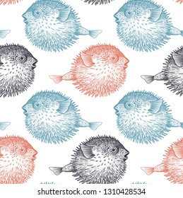 Seamless vector pattern with fish hedgehog under water. Sea bottom and animals. Vintage engraving art. Hand drawing sketch. Kitchen design with seafood for paper, fabrics, wallpaper. White, black, red