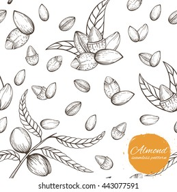 Seamless vector pattern with linear outline almond. Sketches of nuts in vintage style.