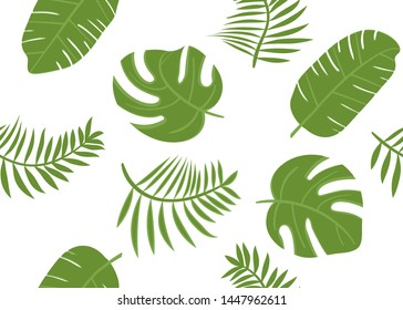 Seamless vector pattern with monstrea, banana leaves on white background. Tropical green banana leaves.