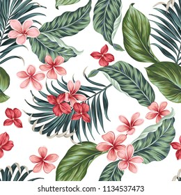 seamless vector pattern with palms, ficus. plumeria, frangipani.