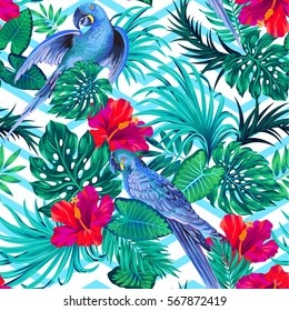seamless vector pattern with tropical parrots. detailed hand drawn vintage style illustration.