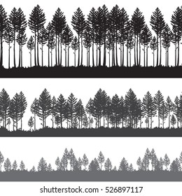 Seamless Vector pine forest landscape. Beautiful hand drawn illustration - dark forest with pine trees, outdoor scene in black and white. Repeatable right and left design
