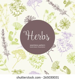 Seamless vintage pattern with ink hand drawn medicinal herbs and plants sketch. Herbal background.