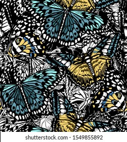 Seamless wallpaper pattern. Exotic Butterflies. Textile composition, hand drawn style print. Vector illustration.