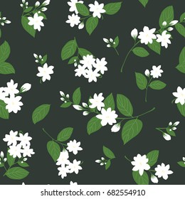 seamless white jasmine with leaves on black background, flower vector illustration