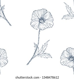 seamless wild flower poppies. Botanical herb fabric surface pattern design