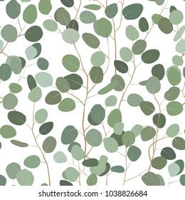 Seamlessr pattern with eucalyptus. Hand painted floral ornament with silver dollar, seeded and baby eucalyptus