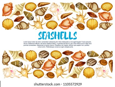 Seashell of marine mollusc banner with border of clam, snail, chiton and tusk shell. Scallop, cockle and turret shell, fighting conch, king crown and pear whelk sea beach mollusk poster design