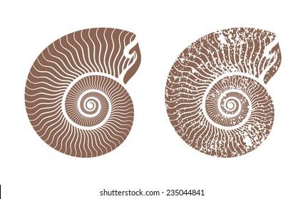 seashell nautilus vector icon illustration