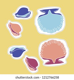 Seashells, cowry,  dashed lines, labels pattern . Hand drawn.