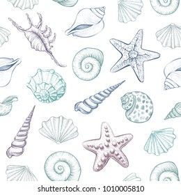 Seashells vector seamless pattern. Hand drawn marine illustrations of engraved line. Colorful background.