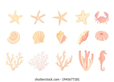 Seashells vector set. Collection of flat, cartoon sketches of molluscs sea shells, starfish, sea urchin, seahorse, hippocampus, crab, coral. Trendy coral reef under water collection isolated on white