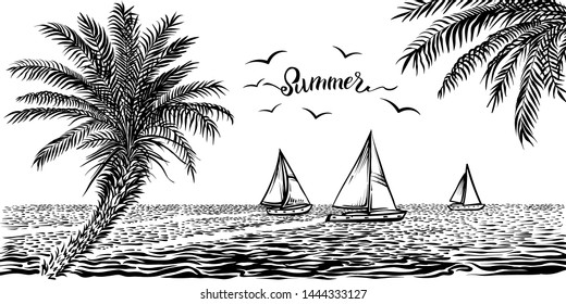 Seaside tropical view with sailboats and palms. Vector illustration of panoramic beach, palm branch and yachts on the water. Silhouette black and white sketchy drawing.