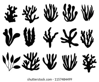 seaweed silhouette isolated. marine plants on a white background set.