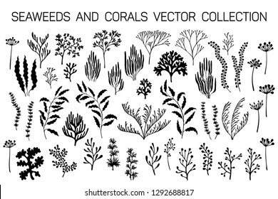 Seaweeds and coral reef underwater plans vector collection. Aquarium, ocean and marine algae water plants, corals isolated on white. Black seaweeds and polyps silhouettes set. Laminaria kelp, staghorn
