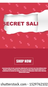 Secret sale banner for various online stores. Secret sale for stories on various social networks.