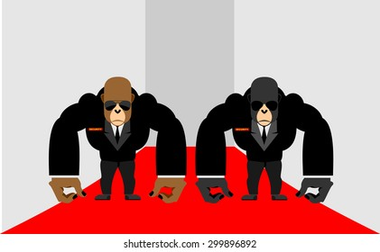 Security Guards gorilla. Big Bodyguards Primates in costumes. Vector illustration  monkey