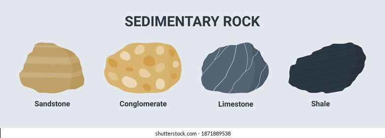 Sedimentary rock illustration set. Sandstone Conglomerate Limestone and shale.