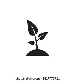 seed and seeding icon vector