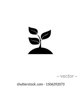 Seed and seeding icon vector. Eps 10