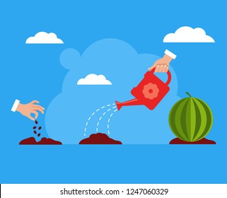 Seed watermelon fruit tree growing stages steps. Gardening concept. Vector flat cartoon design graphic isolated illustration