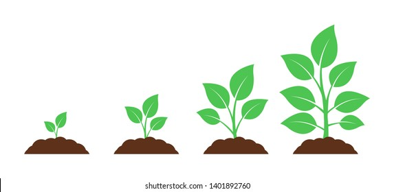 Seedling icon. Plant growth. Sprout from the ground.