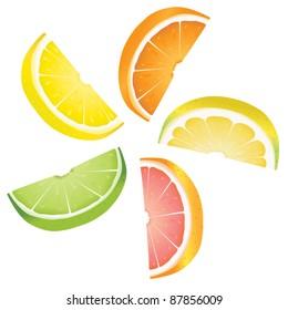 A selection of citrus fruit slices arranged into a revolving shape. Illustrated are lemon, lime, orange, pink grapefruit and pomelo fruit.