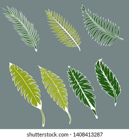 A selection of illustrations of tropical green leaves on a gray background